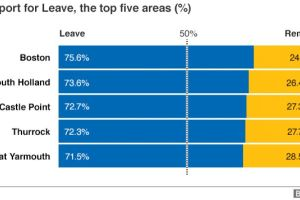 EU referendum: The result in maps and charts