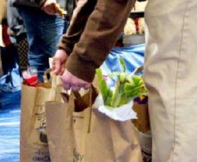 Food Stamp usage declines 8 straight months